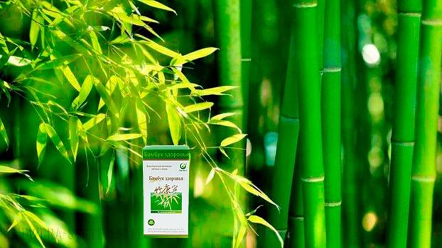 бамбук здоровья, бамбук здоровья гочьжень, бамбук здоровья новая эра, бамбук здоровья свойства, бамбук здоровья применение, экстракт бамбука, природный антиоксидант, природный антикоагулянт