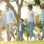 применение сосновой пыльцы, профилактика сердечно-сосудистых заболеваний