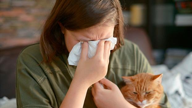 аллергия на шерсть кошки, аллергия на шерсть, новая эра отзывы, аллергический ринит